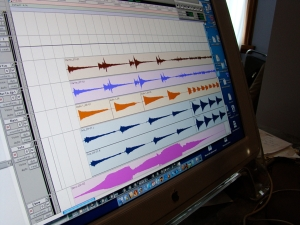Some of Charlie's Audio Wave Forms in Pro Tools
